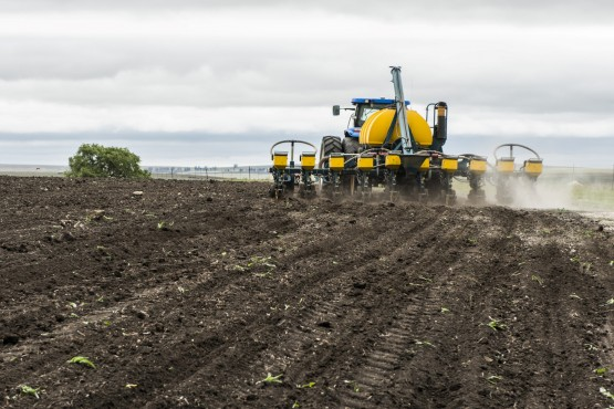 Drier conditions threaten the planting of the 2019 maize crop. Picture: Waldo Swiegers/Bloomberg