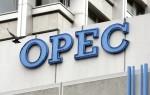 OPEC delivers cut