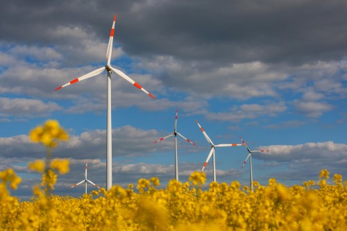 The findings show a turnaround from a decade ago when the world's wealthiest nations dominated renewable investment and deployment activities. Picture: Krisztian Bocsi, Bloomberg