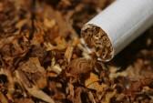 Batsa continues legal fight to lift tobacco ban