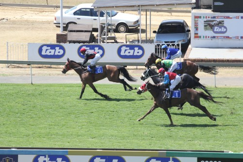 Selling the media and data rights of South African horse racing overseas makes a healthy contribution to profits. Picture: Moneyweb