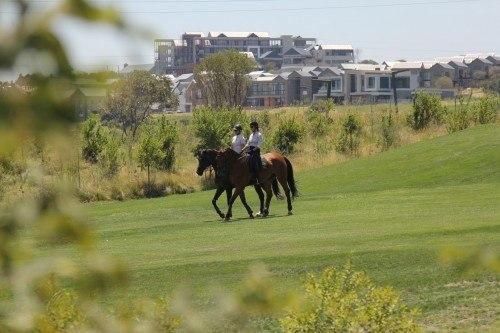 Steyn City offers an equestrian centre.