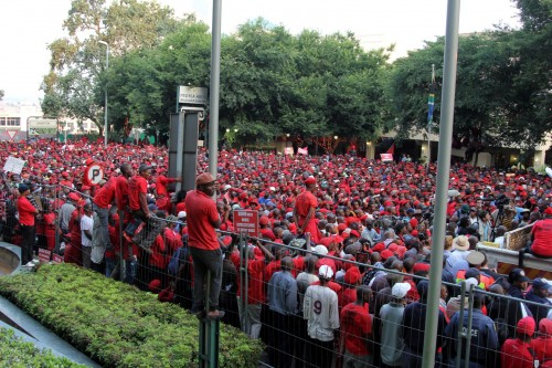 Scores of EFF members attend the march.