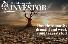 Moneyweb Investor Issue 11