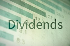 What does the term dividend mean?