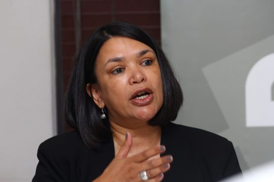 Brenda Martin is Treasurer of the South African Renewable Energy Council (SAREC)