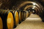 Organic wine market growing fast but to remain niche – study