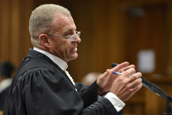 Former state prosecutor Gerrie Nel, representing AfriForum, maintains that an asset forfeiture intervention is required since other safeguards have failed investors 'dismally'. Image: Phill Magakoe, Reuters