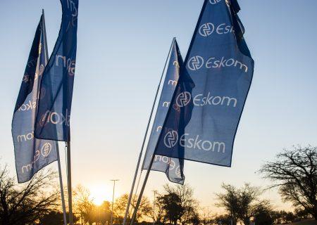Eskom says regulator 'artificially' deducted billions in revenue from tariff