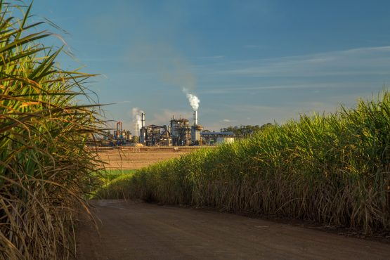 SA's sugar and steel industries – hit by the dumping of cheap imports from Brazil and China – are set to get their own sector specific master plans. Picture: Shutterstock
