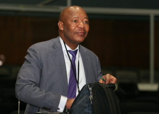 Former PIC CEO Dan Matjila described himself as a cat with nine lives who was left thinking 'I must be on the edge, I am done – there are no lives left'. Picture: Moneyweb