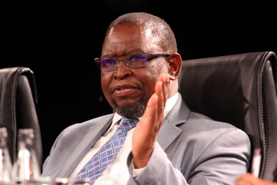 Finance Minister Enoch Godongwana wants to make the country attractive to local investors. Image: Moneyweb