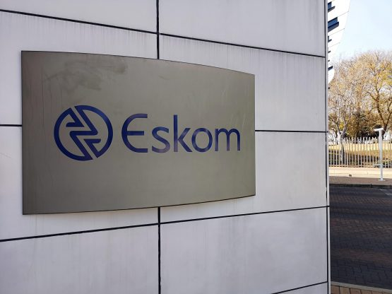 Eskom and its failure to deliver a steady electricity supply has been the main thorn in investor and business confidence. Image: Moneyweb