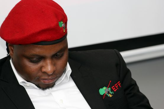 The report on the failure of VBS Mutual Bank implicated the brother of EFF deputy president, Floyd Shivambu. Picture: Moneyweb