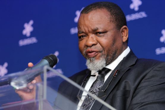 Mines and Energy Minister Gwede Mantashe will no doubt be alarmed that an organisation that made R300m in profit two years ago is now asking Parliament for a R500m bailout. Image: Moneyweb