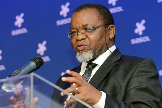 Mines minister Gwede Mantashe (pictured) has the mess of his predecessor Jeff Radebe to ravage through. Picture: Moneyweb