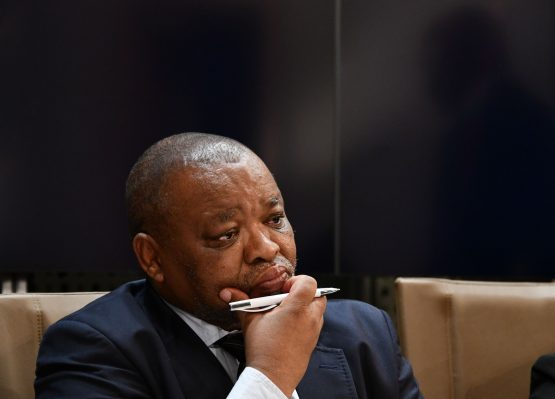 Minister of Mineral Resources and Energy Gwede Mantashe – 'we don't tamper with judges'. Image: GCIS