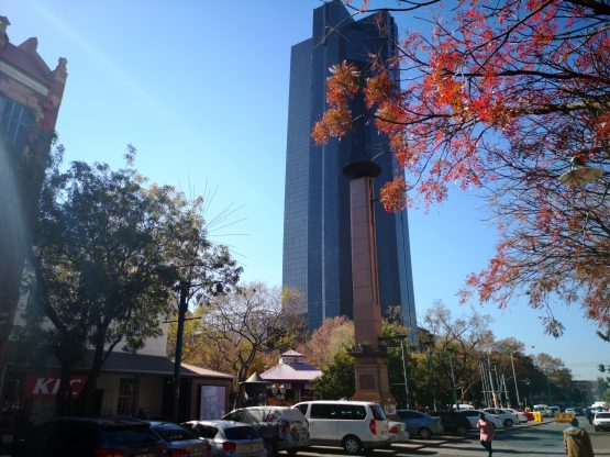 Alongside the Sarb, central banks in Indonesia and South Korea cut rates last week, while Australia, Russia and India cut in prior weeks. Picture: Moneyweb