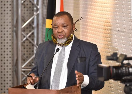 Beware of 'scavengers' in power sector – Mantashe