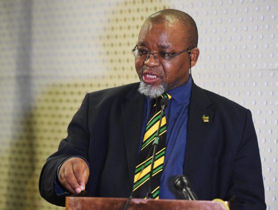 Minister of Mineral Resources, Gwede Mantashe. Picture: Siyabulela Duda