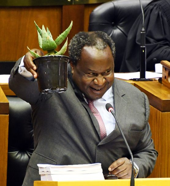 Treasury says it will be able to table the supplementary budget on June 24. Image: Elmond Jiyane, GCIS