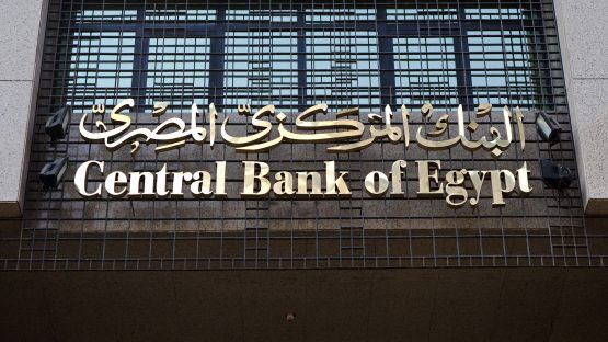 Egypt has seen more portfolio flows, more foreign direct investment as well as the start of IMF-supported reforms, since devaluating. Picture: Shawn Baldwin, Bloomberg