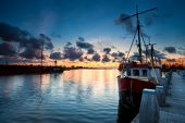 Sea Harvest weathers the pandemic, sees annual revenue surge 10%