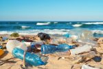 Where does plastic pollution go when it enters the ocean?