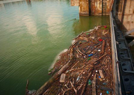 Toxic rivers are poisoning the fruits of democracy