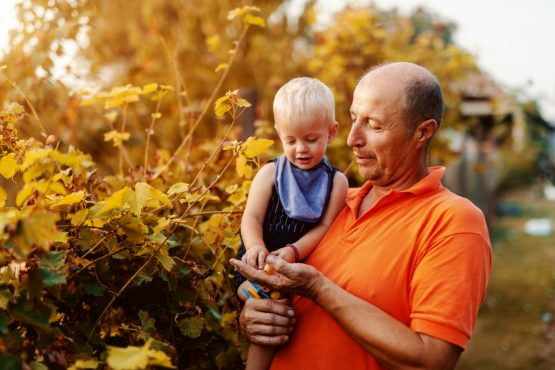Multi-generational planning, sweat and tears underpin success. Picture: Shutterstock