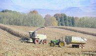 How to rescue SA's land reform policy