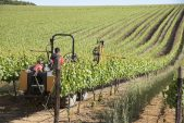 Land reform not driving farm sales