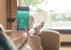 SA's high-risk profile has knock-on effect on insurance premiums – survey