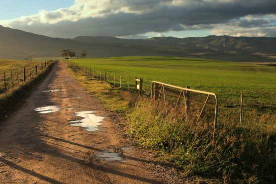 Expert panel for land reform is calling on the state to finalise amendments to the Expropriation Bill. Picture: Shutterstock
