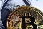Novogratz set for return with hedge fund riding bitcoin 'bubble'