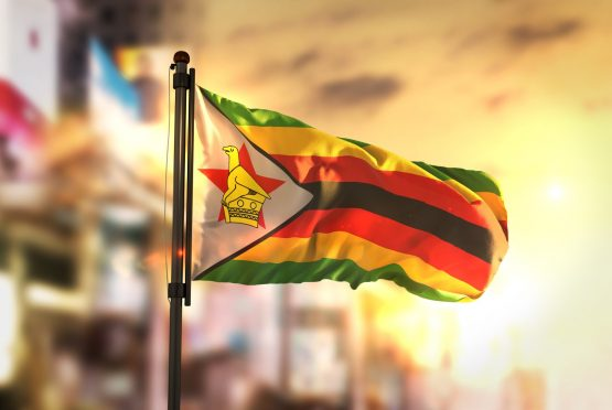 Scrapping Zimbabwe's empowerment law couldlure back investors and smooth engagements with lenders.Picture: Shutterstock