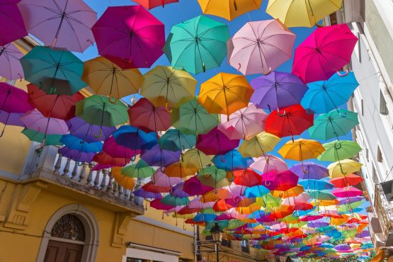 The idea that umbrella funds are all the same and that the cheapest one must be the best one is misguided – there are many more factors at play. Image: Shutterstock