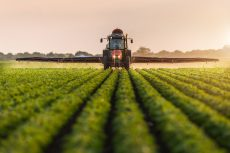 What are the tax implications of transferring a farm into a company?