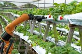 Naspers to invest R100m in agritech start-up Aerobotics