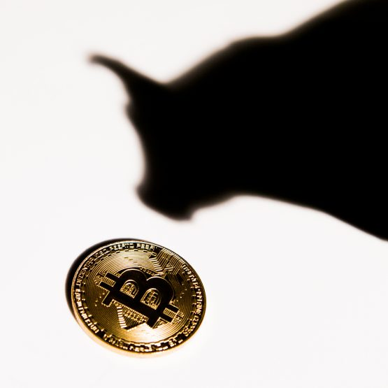 Bitcoin has demonstrated its ability to shrug off the threats to it. Image: Shutterstock