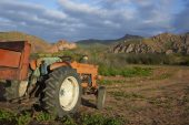 Ramaphosa says land expropriation won't be 'smash and grab'