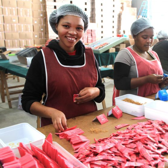 Workers at Glenart's factory, which has become SA's largest Chrismas cracker make. Image: Supplied