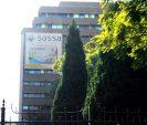 Sassa scraps minister's advisory teams