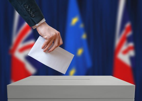 Britain is working on ways to minimise the impact of Brexit on other trading partners as the deadline to exit the EU approaches. Image: Shutterstock
