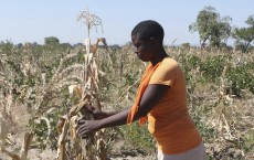 'Black farmers need to be empowered further'