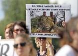 Cecil the lion's death outrage threatens hunt jobs, revenue