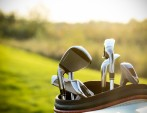 Did you know you (may) have hole-in-one insurance?