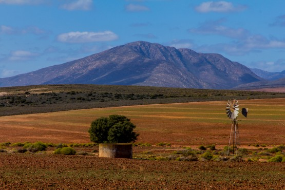 A cycling trip through the Karoo is to be recommended, says the author. Picture: Shutterstock