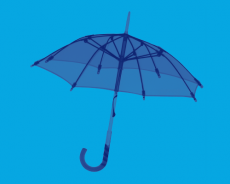 The critical role of a consultant in umbrella funds