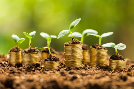 The fund's impact investing share class targets SMEs and is suited to investors with a lower risk profile, while its emerging technologies share class is better suited to those with a higher appetite for risk. Picture: Shutterstock